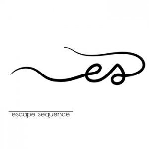Escape Sequence Review
